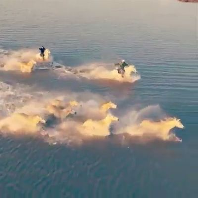 Horse Runs In Water Heart Captured Video ❤️
