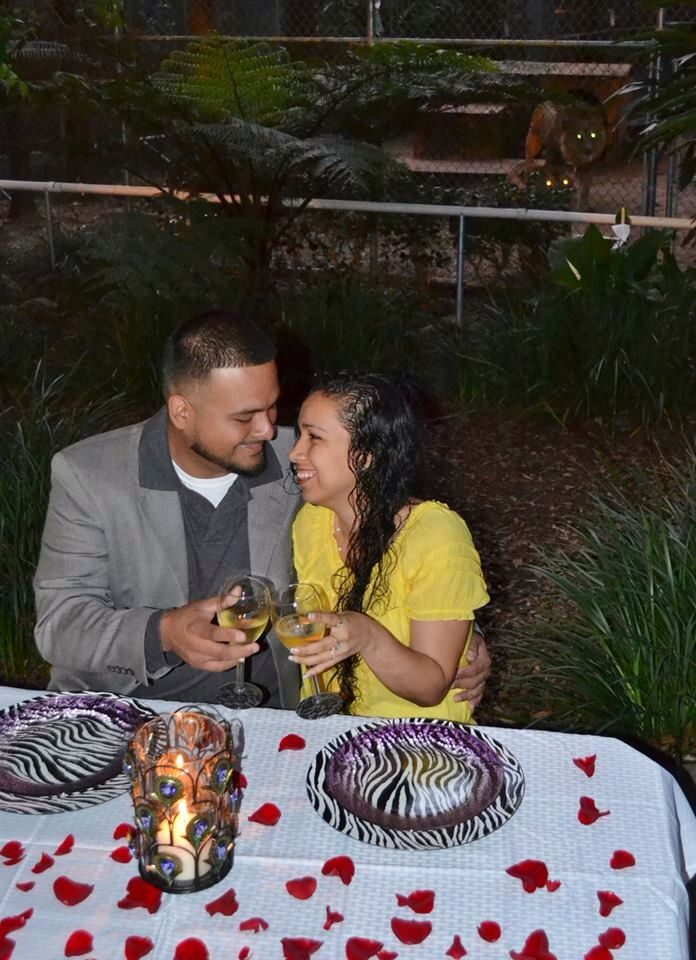 Valentines candle light extravaganza overlooking animals from Dade City's Wild Things  You and your sweetheart will have a secluded private candlelit dining experience in lush gardens surrounded by roaring lions, romancing jaguars and dancing monkeys Trained staff will step out with your special guest for a private encounters Photo package for keepsake of this memorable night included.  Romance your special gal with bouquet of roses and champagne toast Feb 14th at 7:00 #valentines