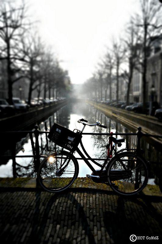 Den Haag Bike