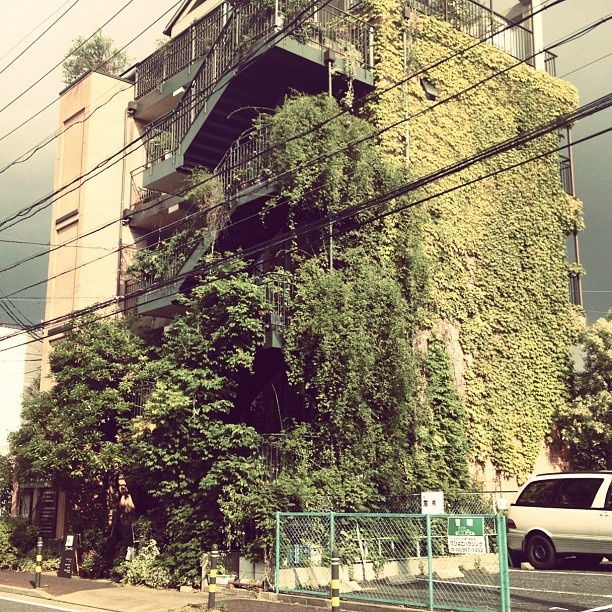 ++ photo : minakkichi: Green Thumb, Building, Places Bricolage, Art Photography, Travel Spaces Places, Plants, Urban Carpets, Gardens Trends, Vertical Gardens