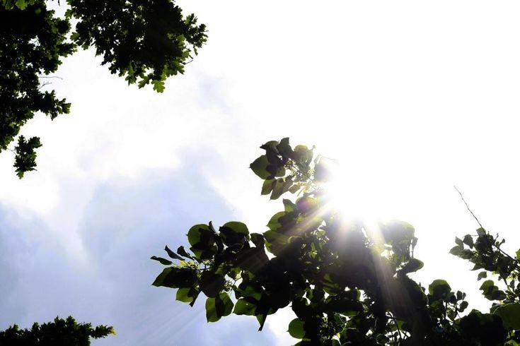 I miss the sun by mircea.fotograf.az