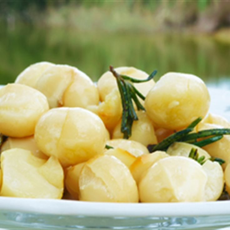 Try this Macadamia Nuts in Macadamia Oil and Rosemary recipe by Chef Maggie Beer. This recipe is from the show Chefs Christmas 2009.