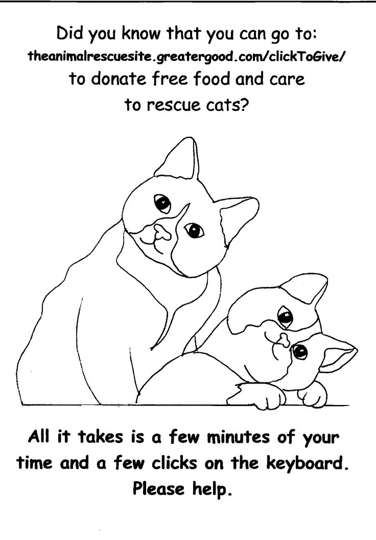 17 Best Images About Just Cats Coloring 1 On Pinterest