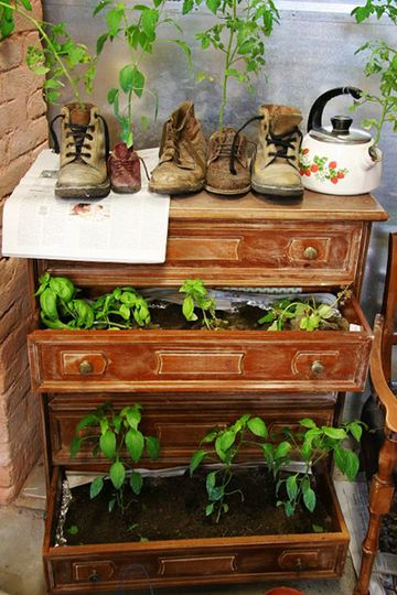 I love repurposed containers for gardening, and the shoes idea is brilliant! I have plenty of old kids' shoes around the house.
