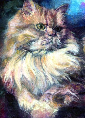 Barbara Fox of Feelthelovepetportraits  The cat's expression is captured so well.