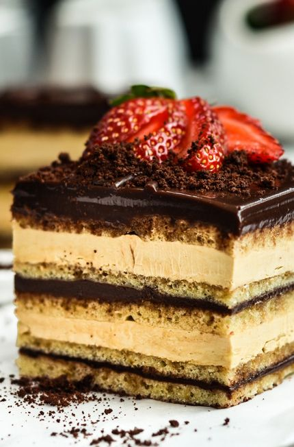 PUMPED FOR HUMP DAY/-/ OPERA CAKE