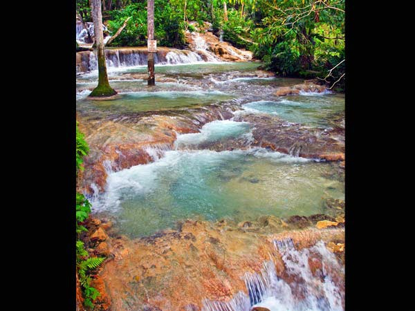 Dunns River Falls- Ochos Rios, Jamaica: Jamaica 2015, Places Living, Favorite Places, Chase Waterfalls, Rocks Climbing, Water Fall, Jamaica Dunn, Jamaica Ocho Rio, Dunn Rivers Fall