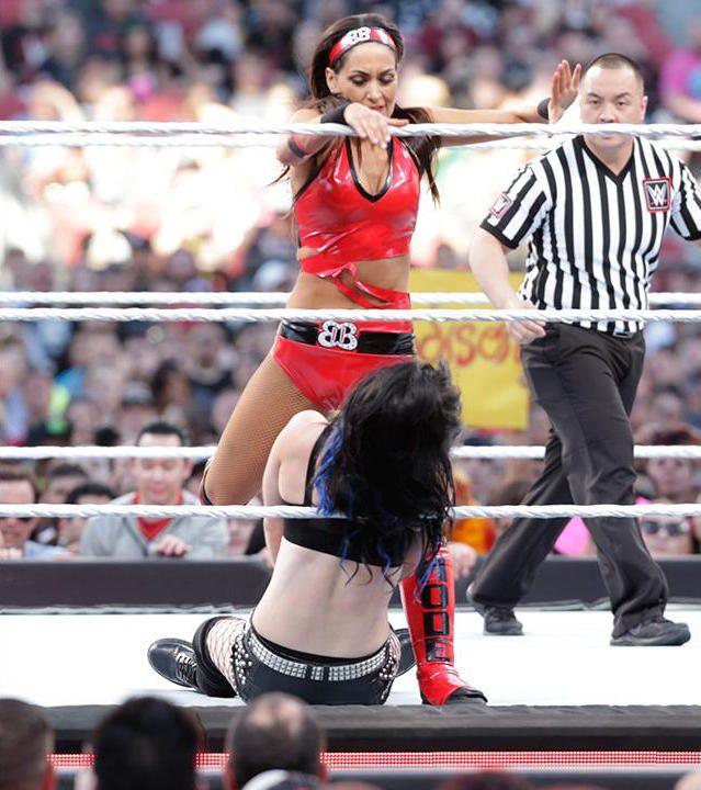 AJ Lee & Paige Vs Divas Champion