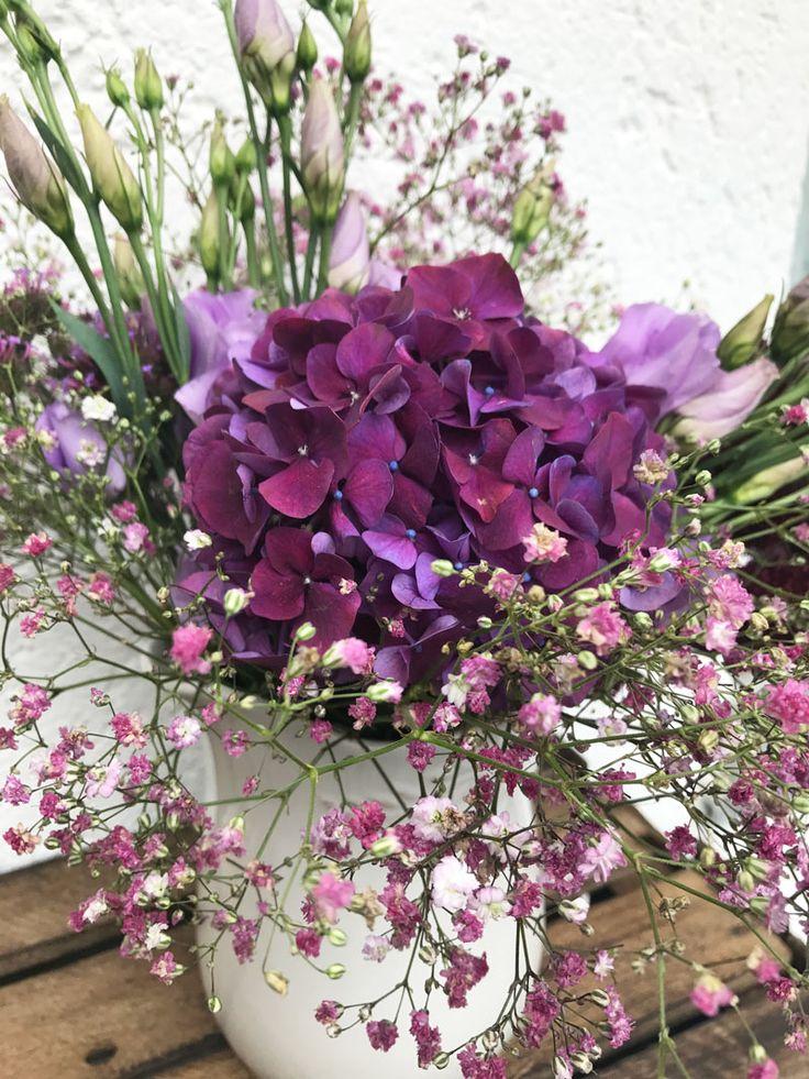 2539 best Flowers images on Pinterest Flowers, Beautiful flowers - grn farben