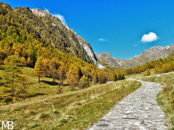 Escursioni in Valle Camonica, una splendida valle italiana con passeggiate adatte a tutti! - Excursions in Valle Camonica, a beautiful italian valley with walks suitable for everyone!