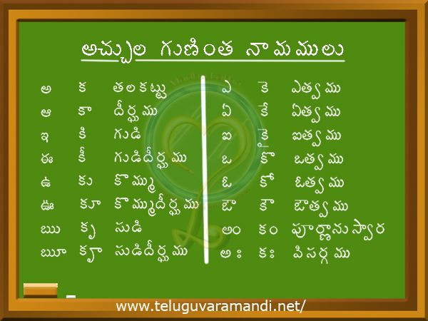 Telugu Vocabulary - Quick Online Learning - All Languages