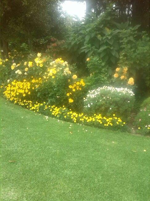 Thee most beautiful garden @ van loveren