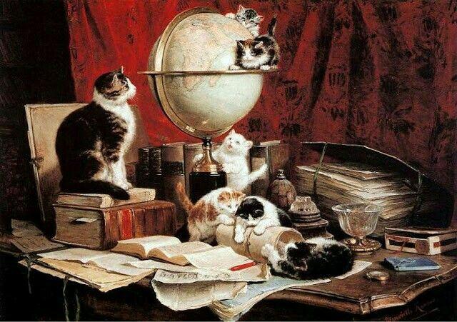 mamma gatta e gattini che giocano con oggetti sul mobile