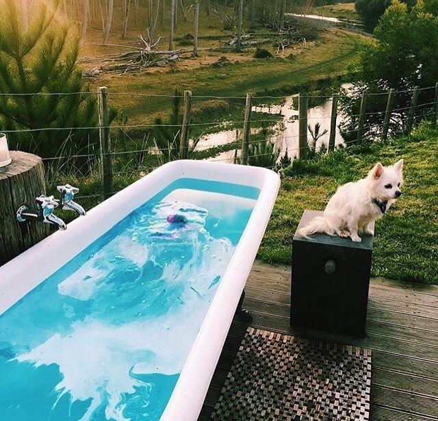 the 25+ best bomba para piscina ideas on pinterest | piscina com