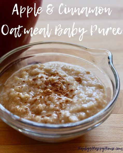 Apple & Cinnamon Oatmeal Baby Puree