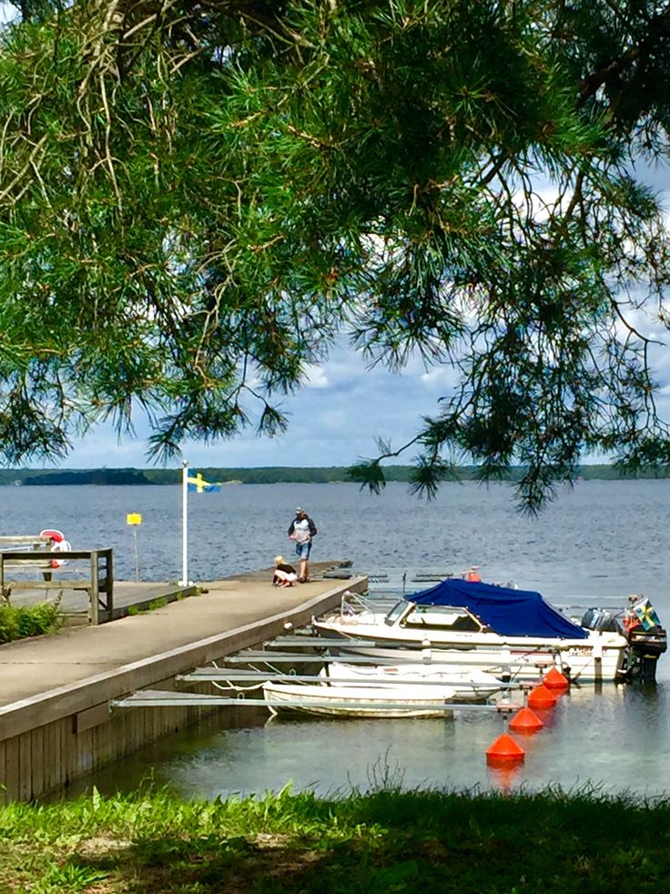 Summer in Sweden 🇸🇪