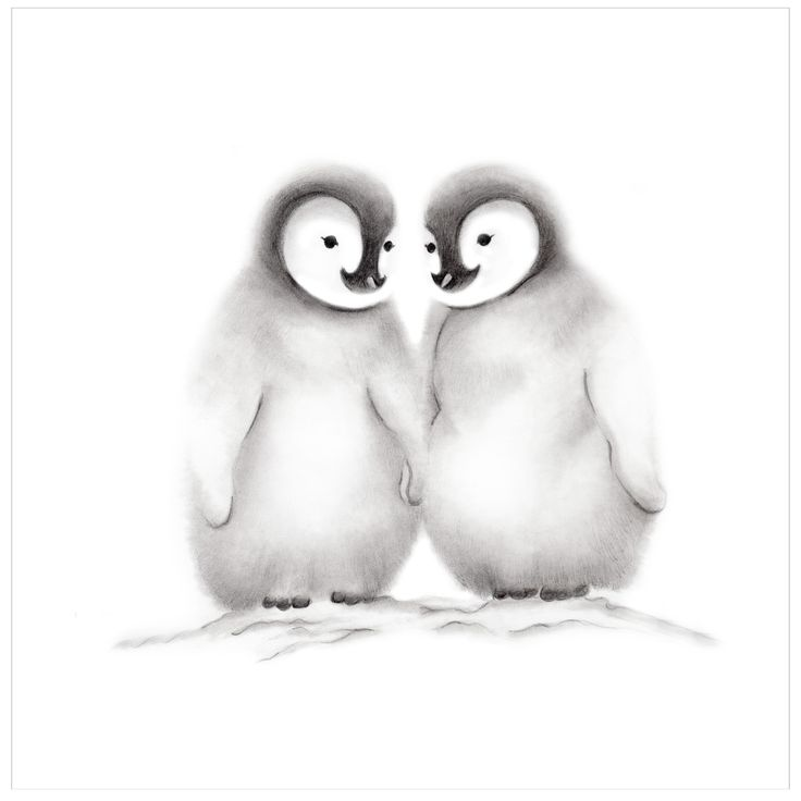 Baby Penguin Friends Pencil Drawing Print