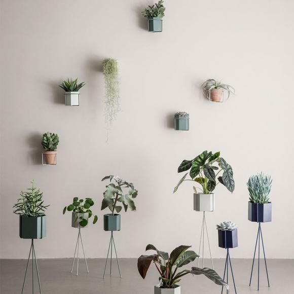 plant stands and wall planters