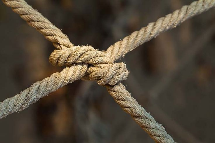How to Tie the Best Knots for Camping and Survival | DIY Survival Skill for SHTF, check it out at http://survivallife.com/how-to-tie-the-best-knots-for-camping-and-survival/