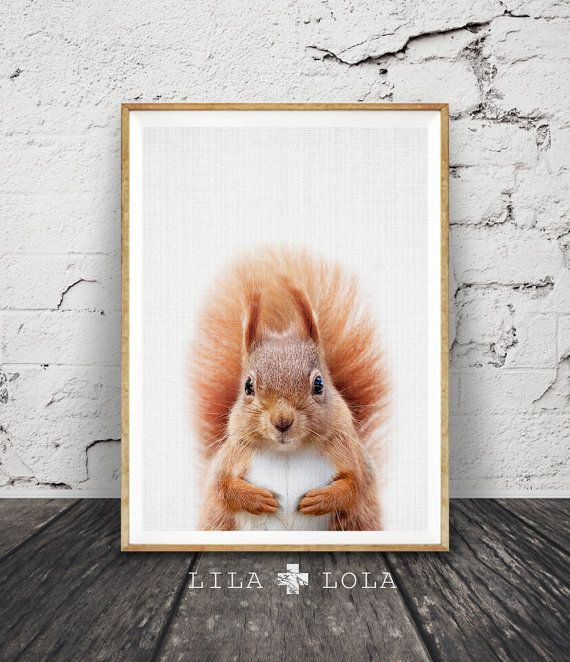 Ardilla impresión arbolados vivero pared arte, bosque color Animal, decoración imprimible, regalos de bebé, descarga Digital, regalo de cuarto de niños