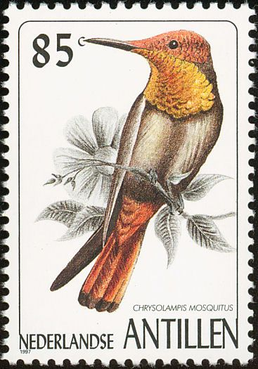 Ruby-topaz Hummingbird stamps - mainly images - gallery format