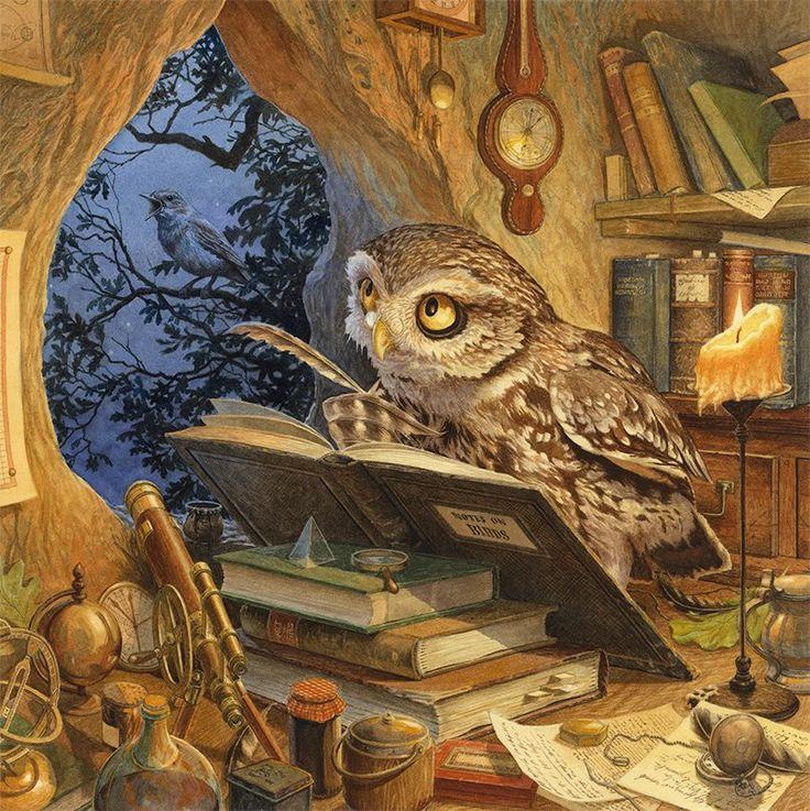 Chris Dunn Illustration  - 'A wise old owl lived in an oak...