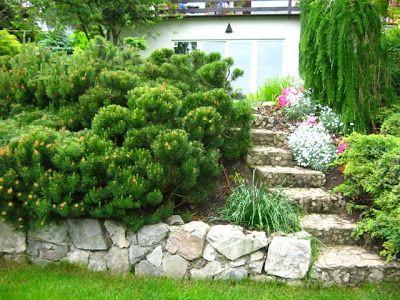 Projektowanie ogrodów – ogród na skarpie, ogród tarasowy. | Nastrojowy.Ogród