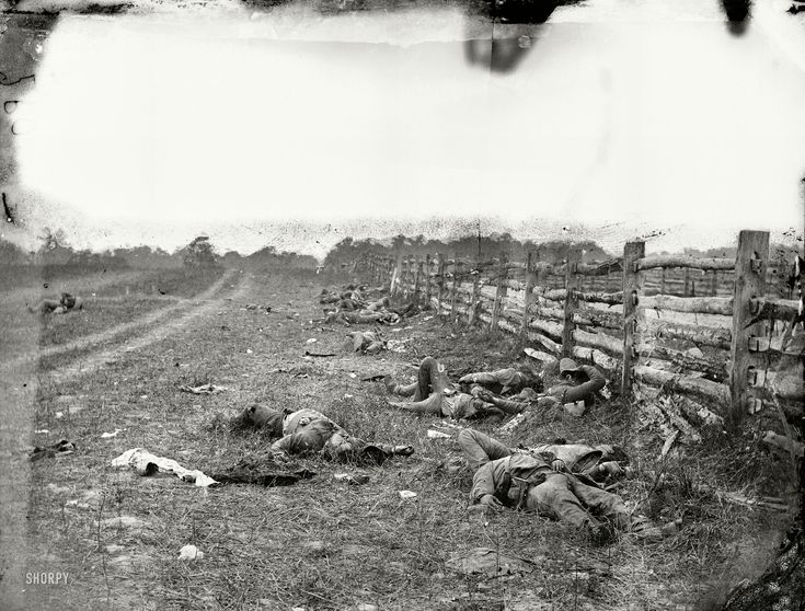 "September 1862. ""Antietam, Maryland. Confederate dead by a fence on the Hagerstown road."" The first major battle of the Civil War on Union territory was fought 150 years ago this month. Wet plate glass negative. View full size."