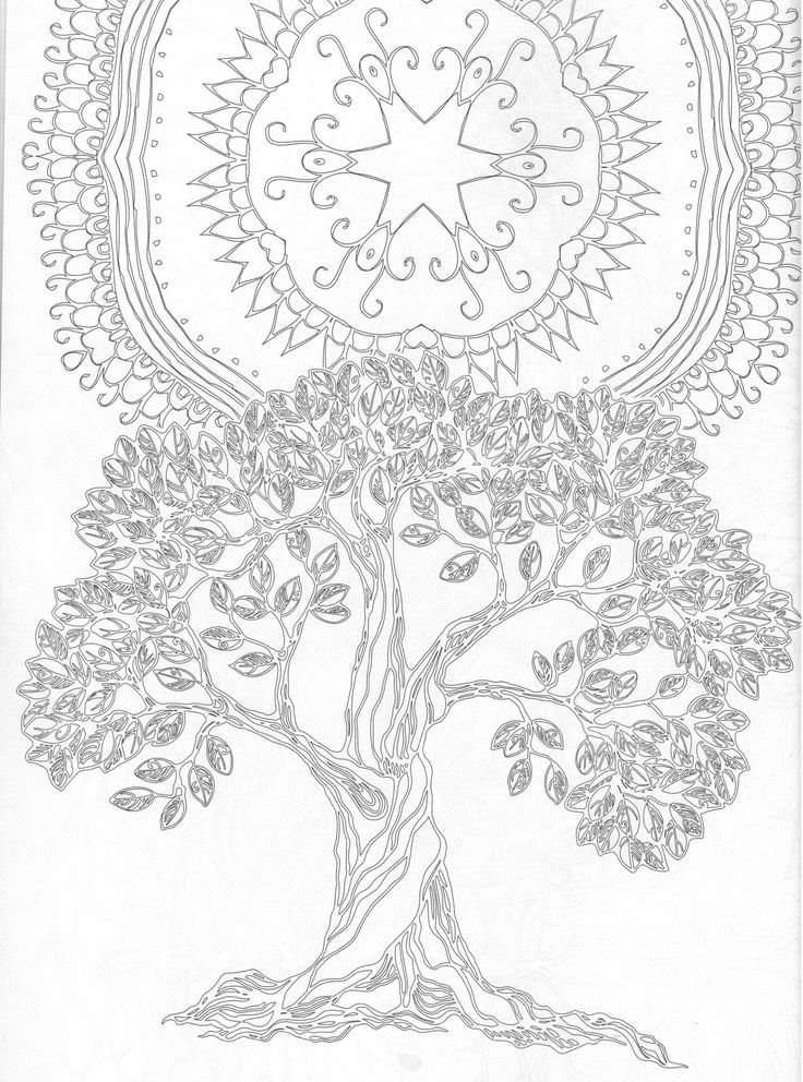 The Forest Adult Coloring Book
