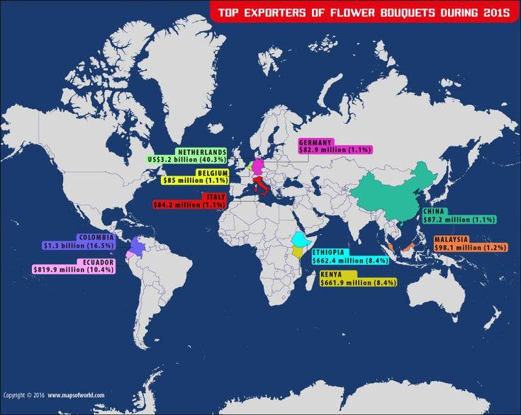 Top Flower Bouquet Exporters in the World