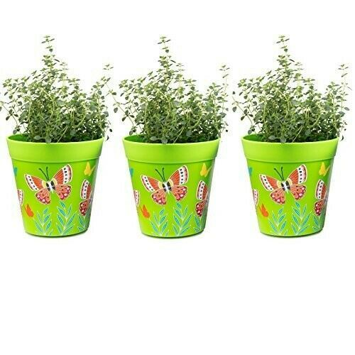 Set Of 3 Green Plant Pots Herbs Flower Planters Indoor Outdoor Plastic Boxes Pot Herb Pots Flower Planters Green Plants