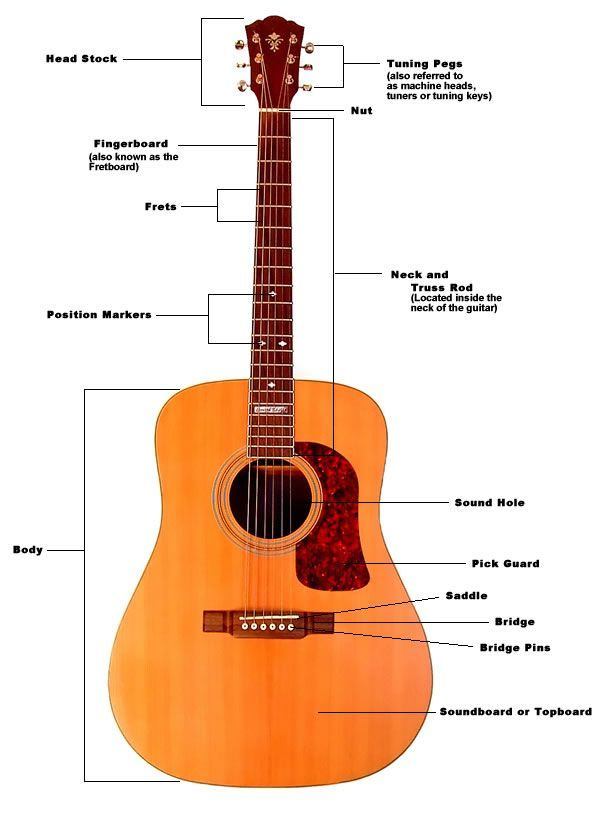 How To Restring An Acoustic Guitar Acoustic Guitar Parts Learn Acoustic Guitar Guitar