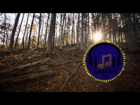 Music Predators - Fast Foot [Electro House]