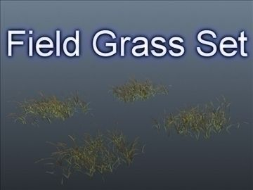 Field Grass Set 001 3D Model-   Set of 4 unique Field grasses.High resolution geometry, useful for near renders. Enable Two Sided rendering in your rendering application. The 3ds Max 8 material setup, textures are included, has the grass material set to 2-sided rendering. These preview images were rendered in 3ds Max 8, scanline renderer, with basic lighting, nothing fancy. User will need to light the grass from their own scene and rendering setup. You may need to reloadreassign the textures after loading the file, same goes for the 3DS and OBJ formats. Included is a simple ocacity map, for the leaf shaders. Invert the opacity map in your 3D application if needed. Use the opacity map if youd like to smooth out edge renders of the leaves, giving the look of extra details. Same opacity map is also applied to the tips of the grasses for a smooth rendering look. All items have UVs too.Triangles: 194000Vertices: 148000Item Count: 4 unique grasses. - #3D_model #Grass