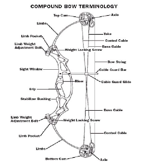 pin by chris lynn on archery | archery hunting, archery bows, archery  equipment