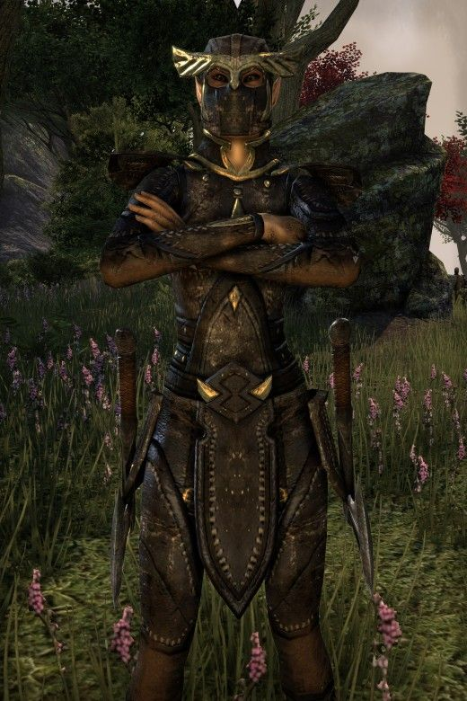 """Finding skyshards means more skill points, which means a more powerful """"Elder Scrolls Online"""" character. Here's the location of every skyshard in the game!"""