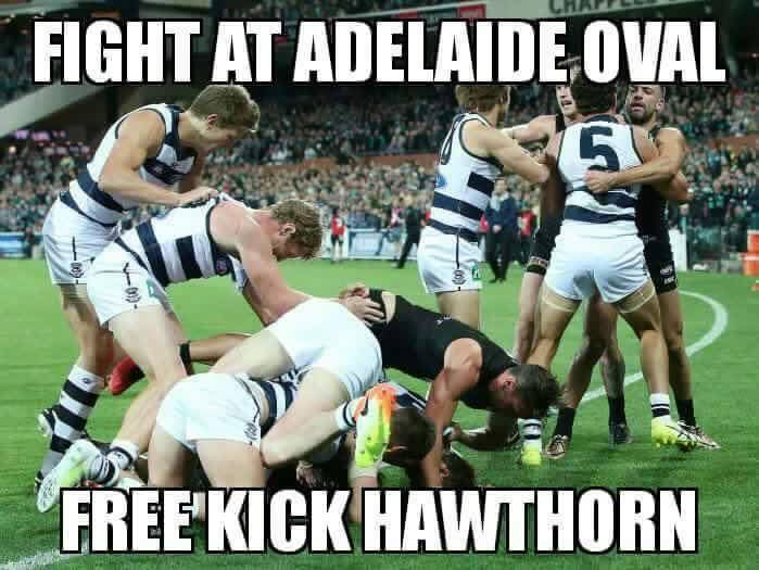 Love these 'Free Kick Hawthorn' memes
