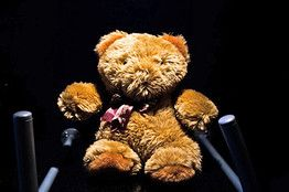 Teddy Bear Spy Cams Challenge Divorce Procedures.