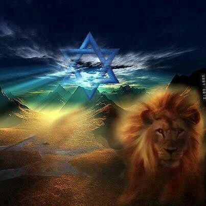 33 Best Images About Lion Of Judah On Pinterest To Loose