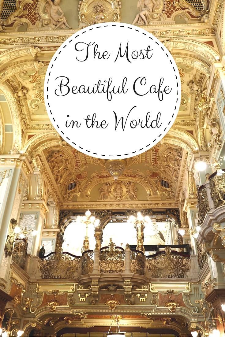 The most beautiful cafe in the world. Guess where? Just wait until you see more…