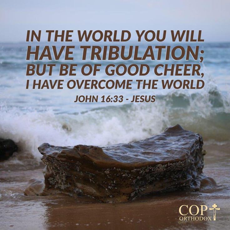 John 16:33 These things I have spoken to you, that in Me you may have peace. In the world you will have tribulation; but be of good cheer, I have overcome the world.