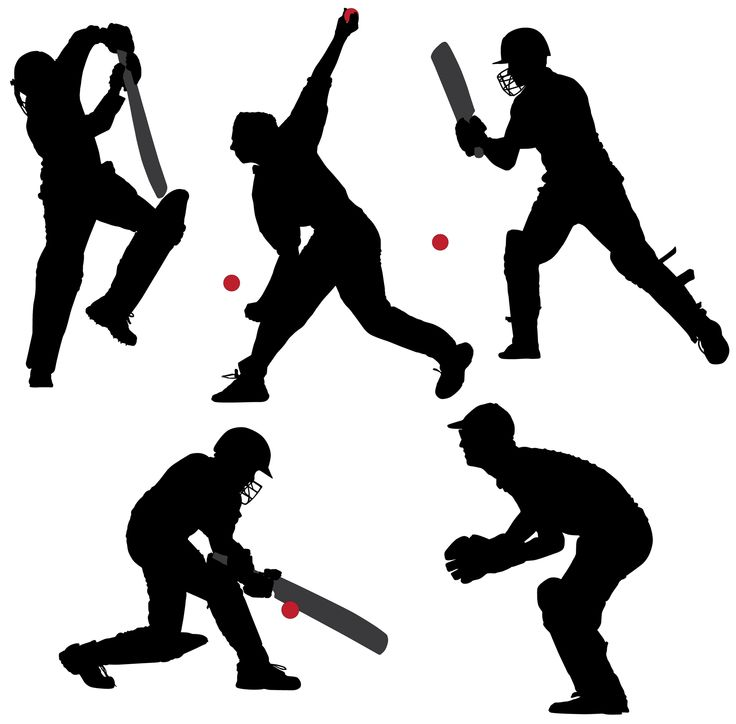 Cricket Sport Silhouette on white background.