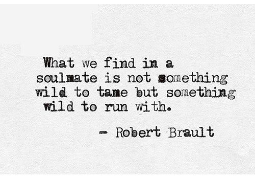 27 Best Love For The Wild Quotes Images On Pinterest: 713 Best Images About Tumblr Quotes We Love In Black And