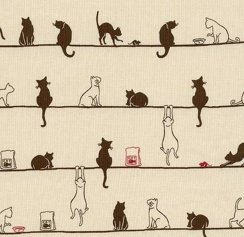 Cat Pattern-Tumblr