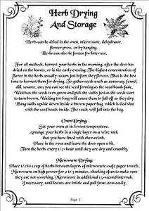 printable book of shadows | Book-Of-Shadows-800-Pages-Of-Printable-Spells-Rituals-Crafts-Herbs ...