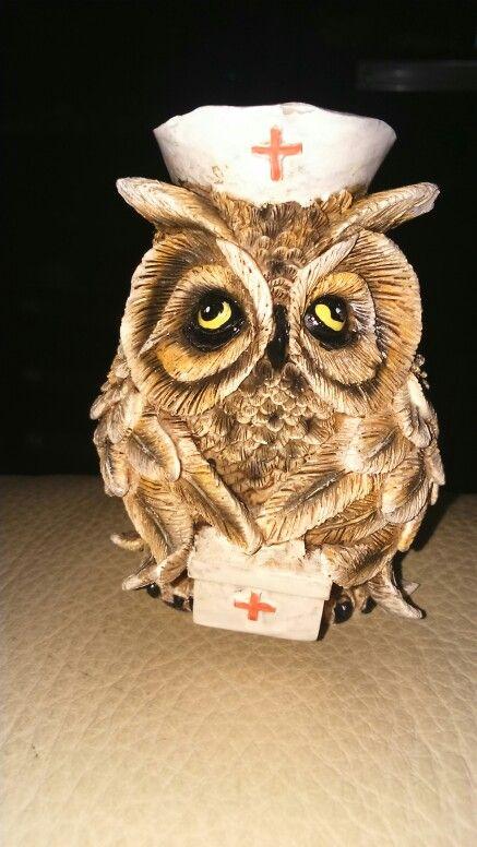 Nurse owl