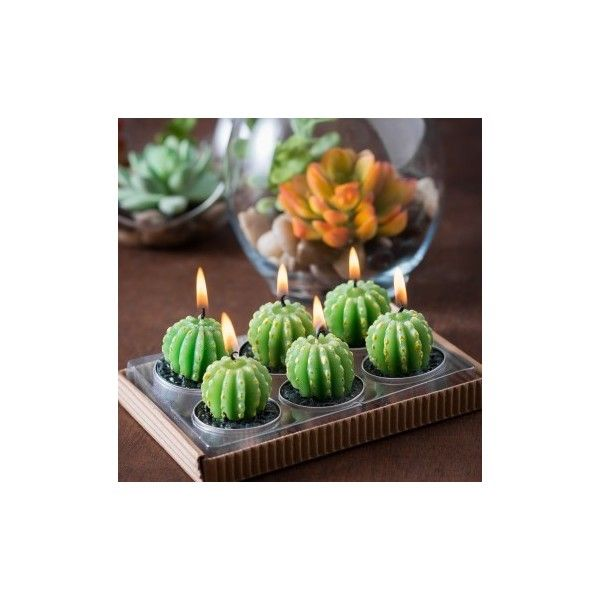 Golden Barrel Cactus Tealight Candles 6/pack ($8) ❤ liked on Polyvore featuring home, home decor, candles & candleholders, cactus home decor, cactus terrarium, southwestern home decor, southwest home decor and garden terrarium