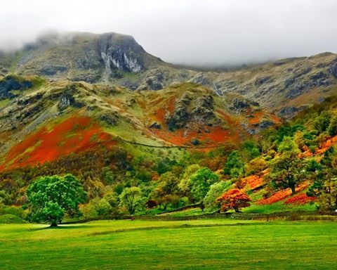 inanılmaz doğa renkleri!