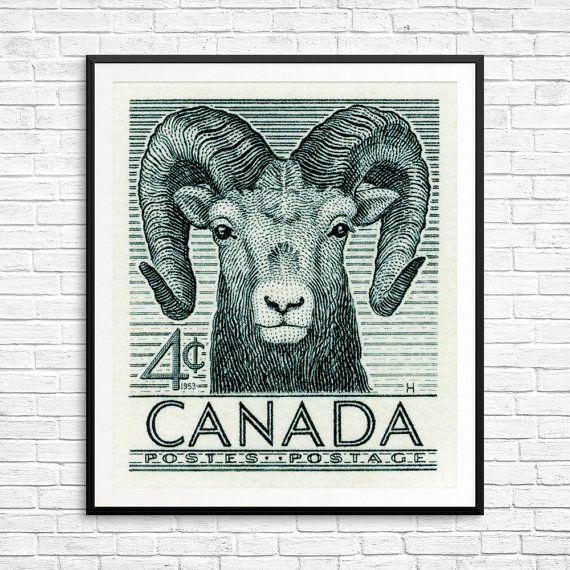 Sheep, sheep print, sheep art, sheep poster, bighorn sheep, mountain sheep, cute sheep, Canada sheep, Canada Postage, postage stamp art