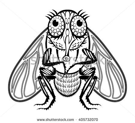 image.shutterstock.com display_pic_with_logo 2701390 405732070 stock-vector-funny-tsetse-fly-405732070.jpg